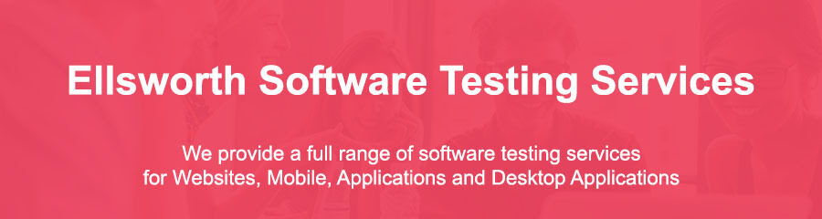 Software Security Testing Ellsworth Me