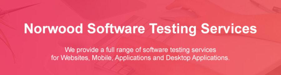 Software Testing Strategies Norwood Massachusetts