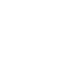 Press Boston Globe White