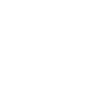 Press city of boston seal white